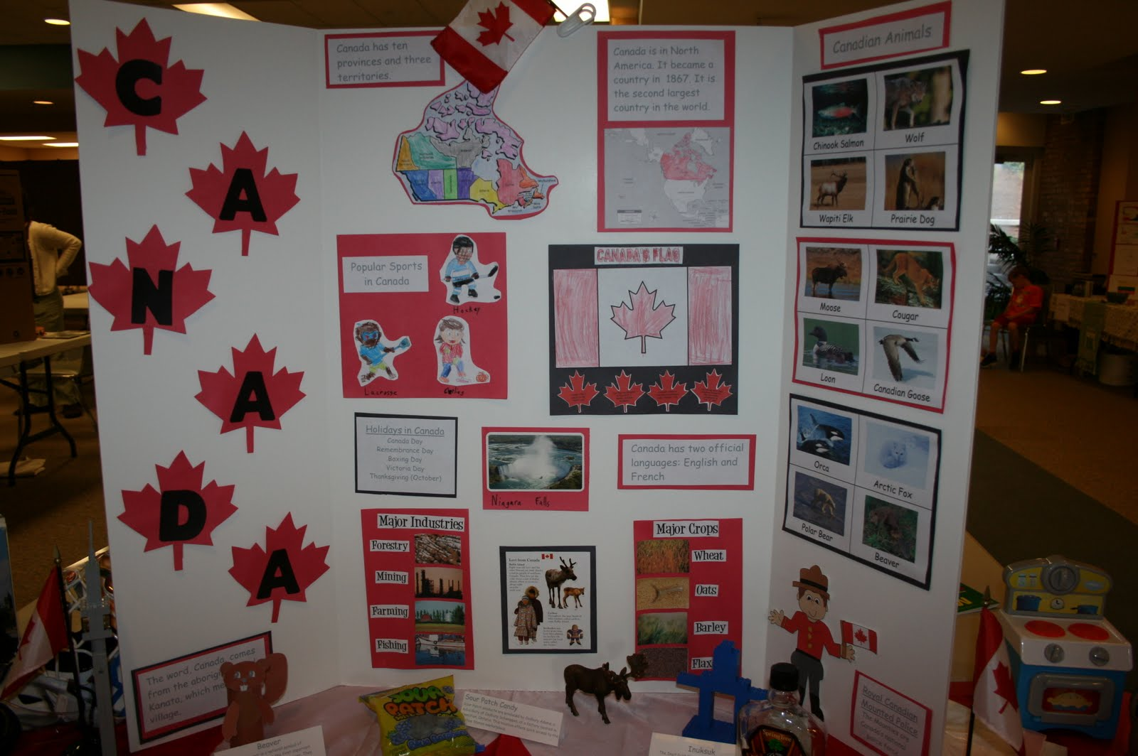 adventures in homeschooling canada unit study for the geography fair