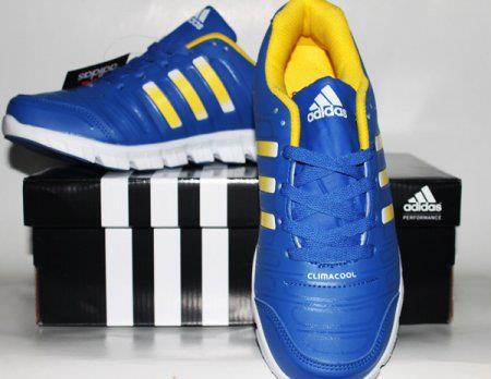 Sepatu Adidas Climacool 02