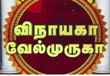 Watch Vinayaga Velmuruga 22-10-2014 Sun Tv Deepavali Special Full Program Show Youtube 22nd October 2014 Sun Tv Diwali Special Program HD Watch Online Free Download