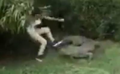 Μεξικό: Τουρίστρια πήδηξε στο λάκκο με τους… κροκόδειλους! (video)