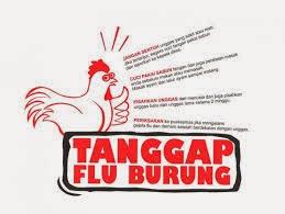 Penelitian dan Perkembangan Flu Burung Pada Kucing