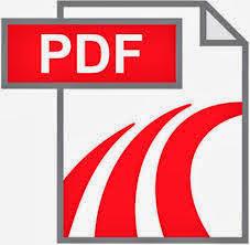 Formato pdf en la web