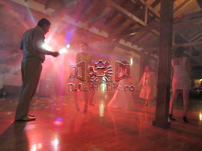 Nunta cu DJ la Popasul Voievozilor - sat Lacul Turcului - 4