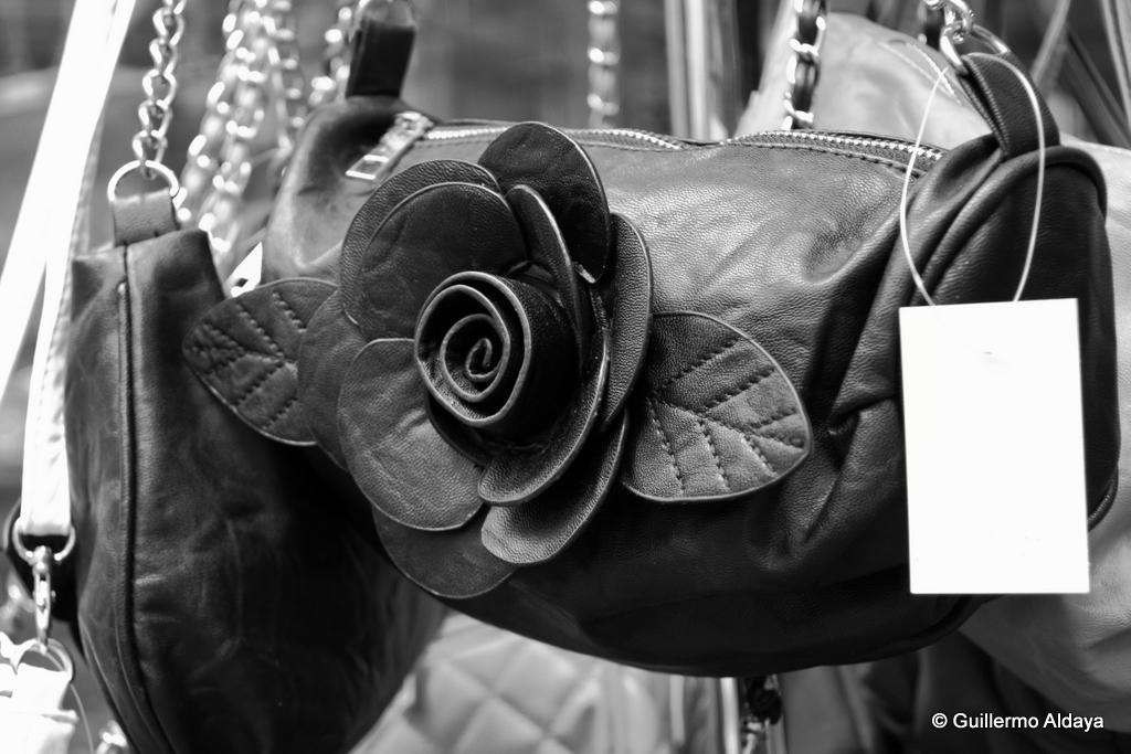 La rose noir, by Guillermo Aldaya / AldayaPhoto