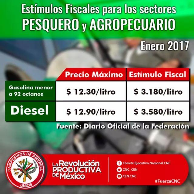 El coste el 1-litro de la gasolina en ssha