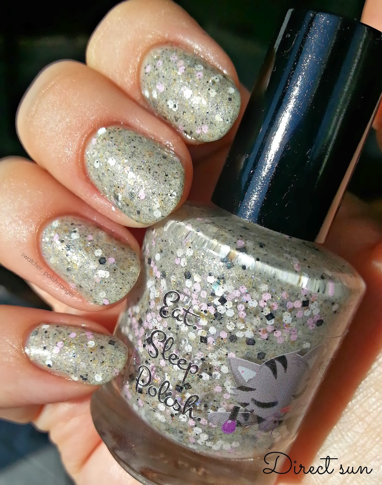 Eat Sleep Polish Sidewalk Strider swatch