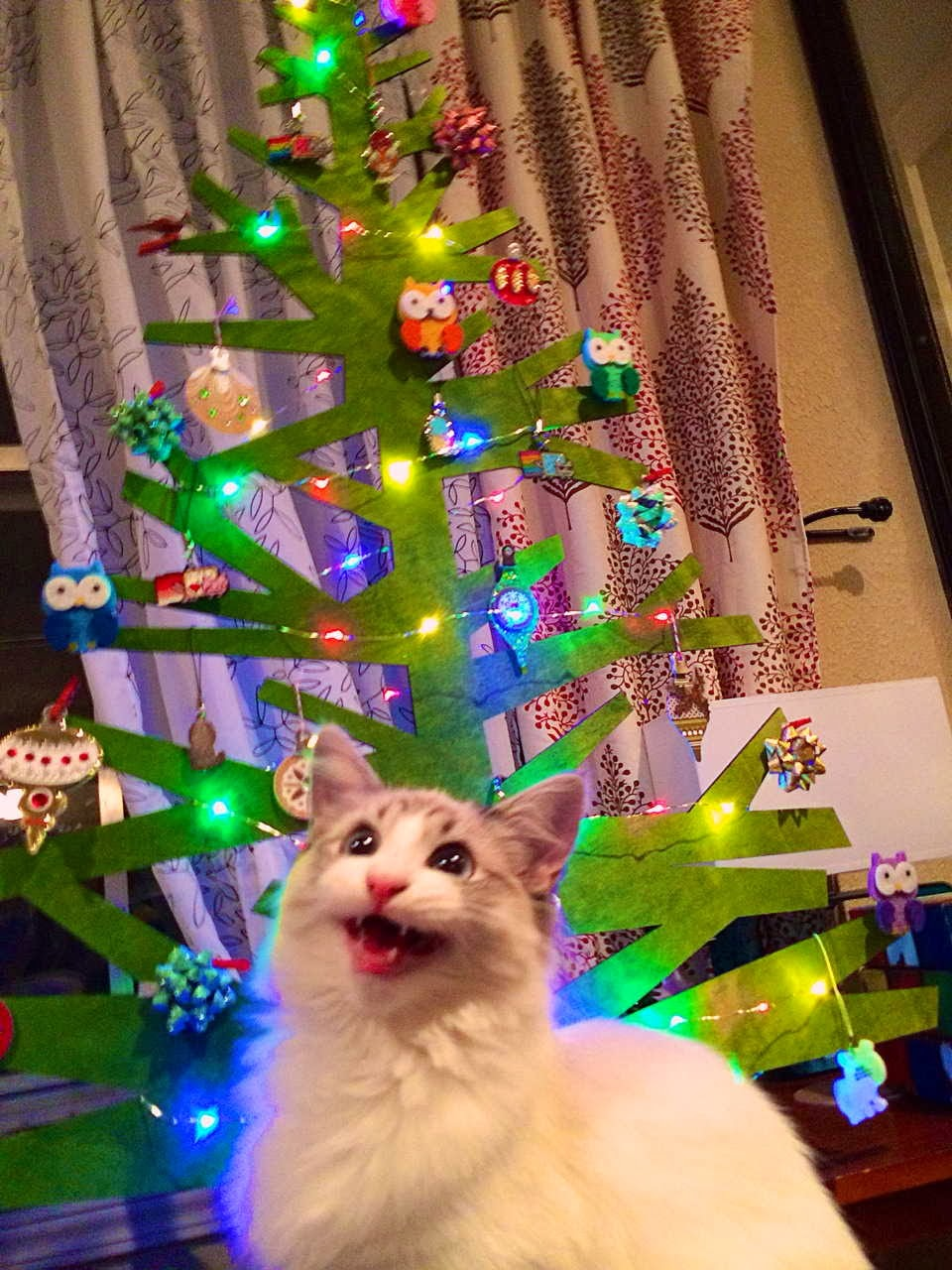 Funny cats - part 82 (40 pics + 10 gifs), cat photo, cat with paper christmas tree