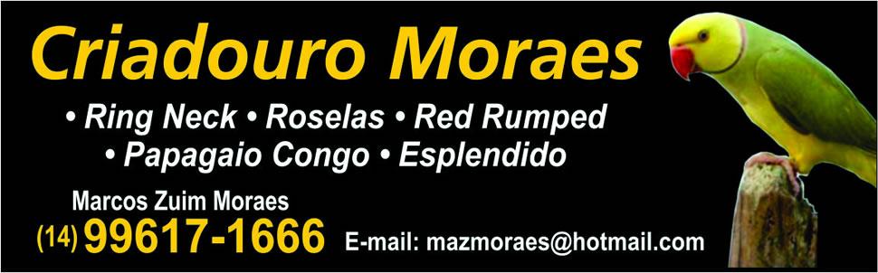 Criadouro Moraes