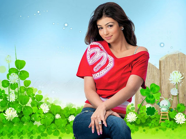 Ayesha Takia HD Wallpaper