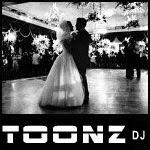 Toonz DJ Blog