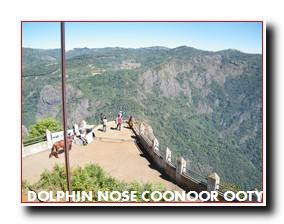 DOLPHIN NOSE OOTY