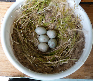 Whoopidooings: Canary eggs