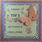 Top 3 on Butterfly Challenge