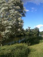 Sunny Day at Abingdon