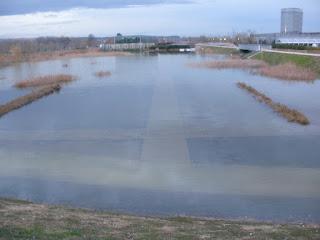 Balsa Parque del Agua (Luis Buñuel) Crecida del río Ebro 22/01/2013 Zaragoza