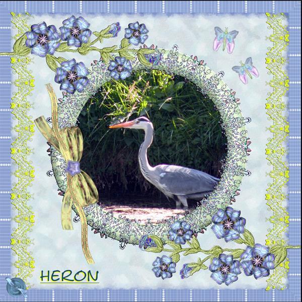 Heron..
