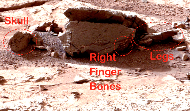 http://www.weather.com/news/science/nasa-says-thigh-bone-was-not-found-mars-20140823