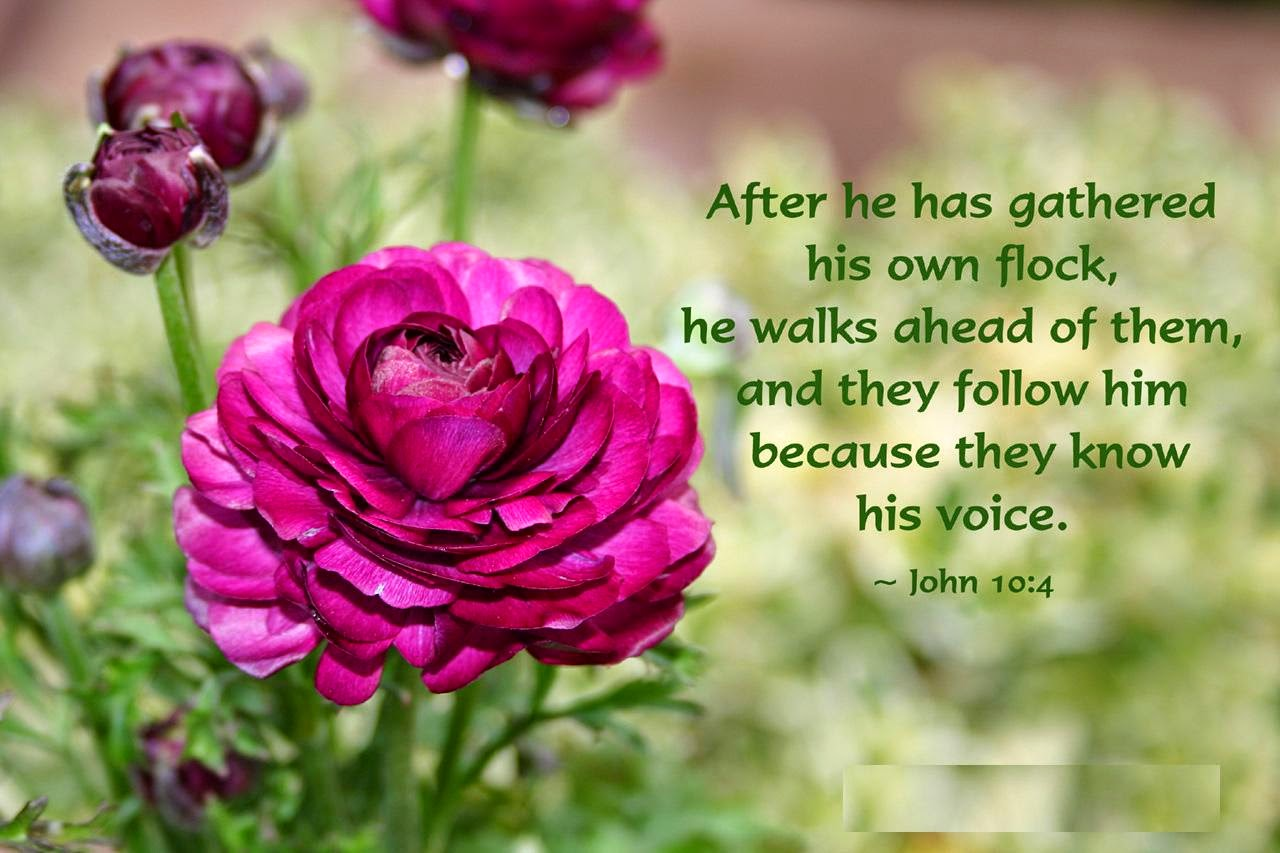 Flower quotes for image