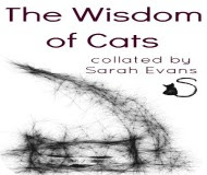 The Wisdom of Cats EBook