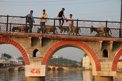 Bridge in Udaipur