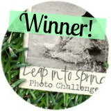 Leap Into Spring Photo Challenge Winner