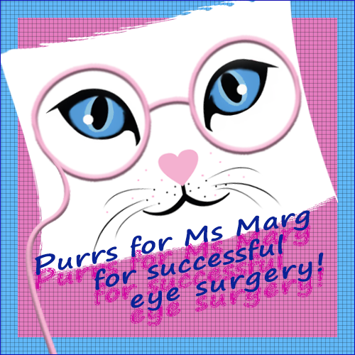 PURRS FOR MS. MARG