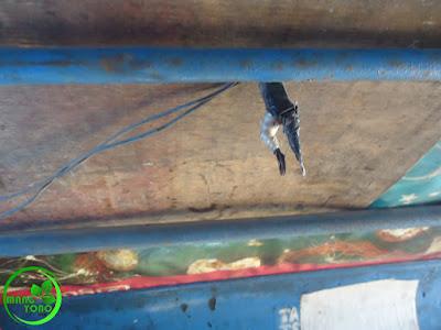 Kabel ini untuk memberhentikan lajunya bemo