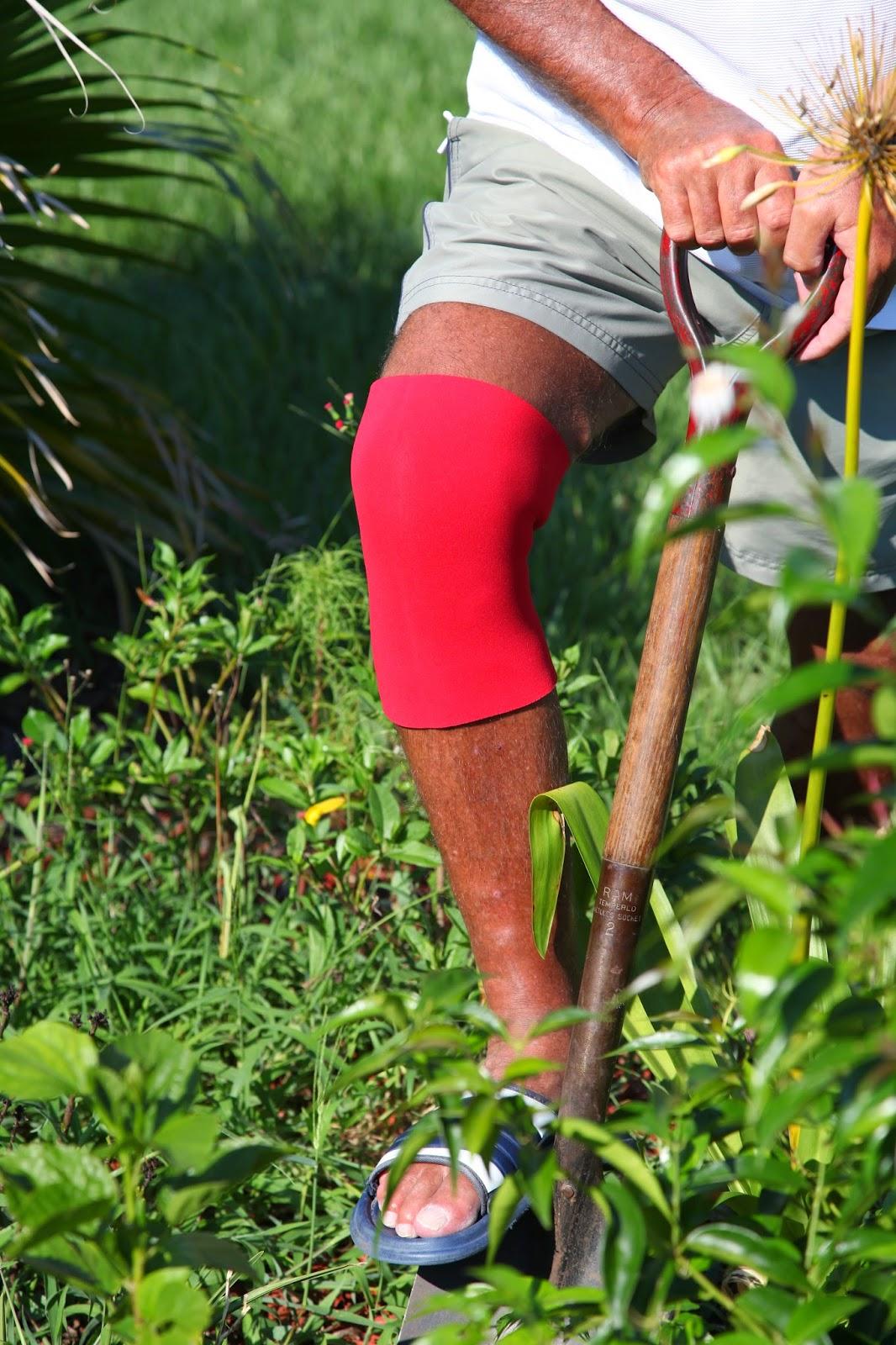 Treatment of Arthritis or Osteoarthritis Knee Pain