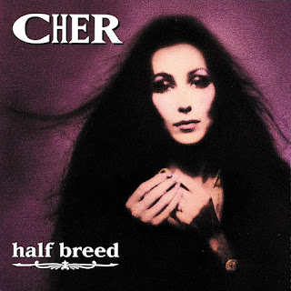 Cher - Dark Lady (1974) On WLCY Radio
