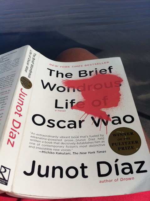 brief wondrous life of oscar A true literary triumph, the brief wondrous life of oscar wao confirms junot diaz as one of the best and most exciting voices of our time (from the book jacket).