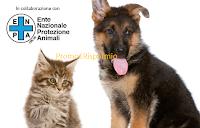 Immagine Omaggi Kit estate per cane e gatto da Royal Canin
