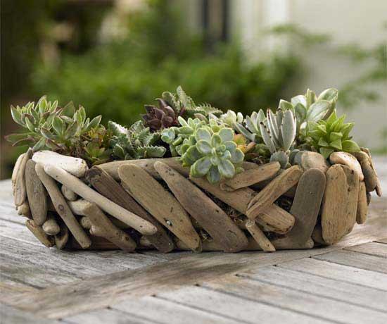 mini jardim cactos suculentas:Exemplos de Mini Jardim de cactos e ou Suculentas