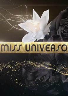 Assistir Miss Universo 2015