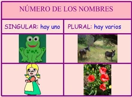 http://centros.edu.xunta.es/ceipcampolongo/intraweb/Recunchos/1/Recursos_Anaya/datos/01_lengua/03_Recursos/02_t/actividades/gramatica/01.htm