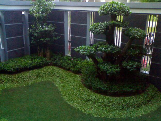 tips membuat taman minimalis model rumah modern