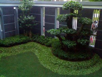 Tips membuat Taman Minimalis modern terbaru 2013