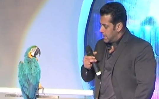 Salman Khan With New Friends 'Radhey' & 'Oh Fish'!