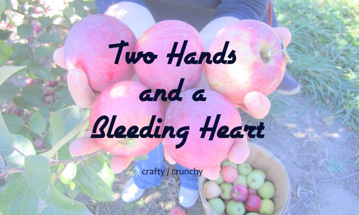 Two Hands and a Bleeding Heart