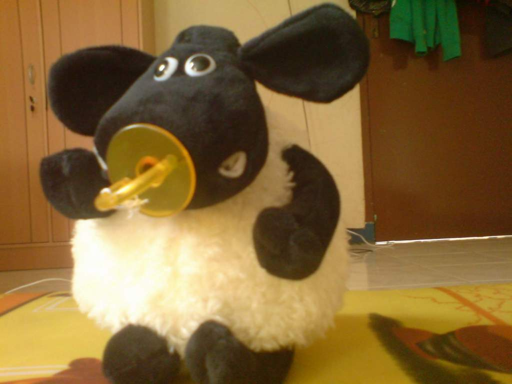 http://4.bp.blogspot.com/-Av5xMpVlwrs/TtiCJk0uOpI/AAAAAAAAEhQ/cG8hPENngcs/s1600/timmy-shaun-the-sheep.JPG
