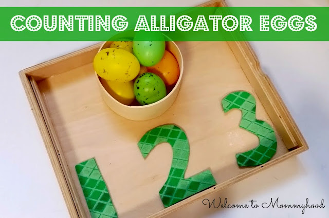 Preschool activities: FREE alligator printables and activities by Welcome to Mommyhood #preschoolactivities, #toddleractivities, #montessori, #freeprintables