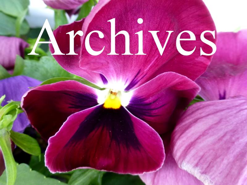 Archives du Blog