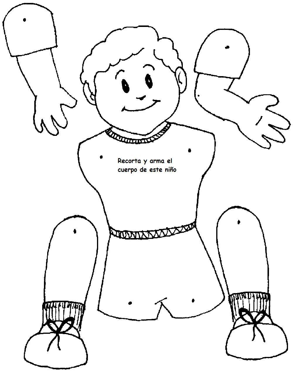 Galerry partes del cuerpo humano para colorear para nios