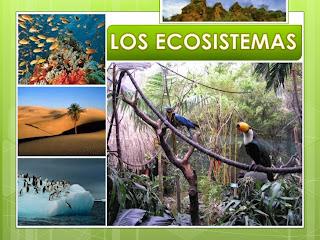 https://miclaseenlanube.wordpress.com/cnatur/los-ecosistemas/