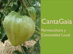 Descarga: Presentación CantaGaia 12-13
