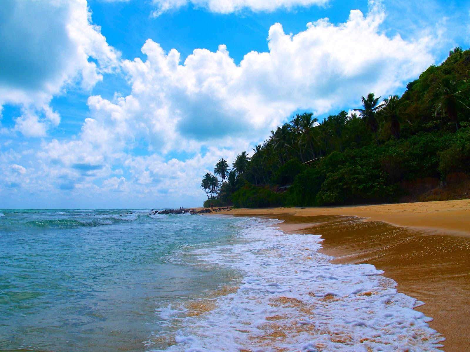 бразилия пляж natal pipa Ponta do Pirambu Brasil