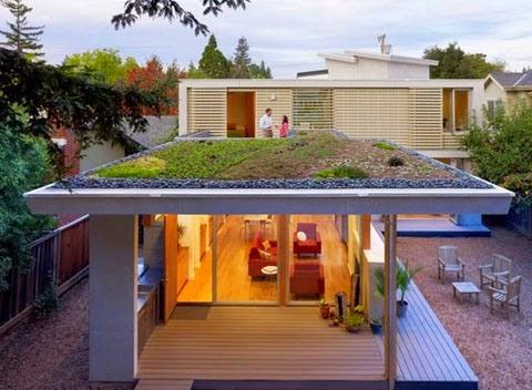 Taman diatas atap rumah minimalis