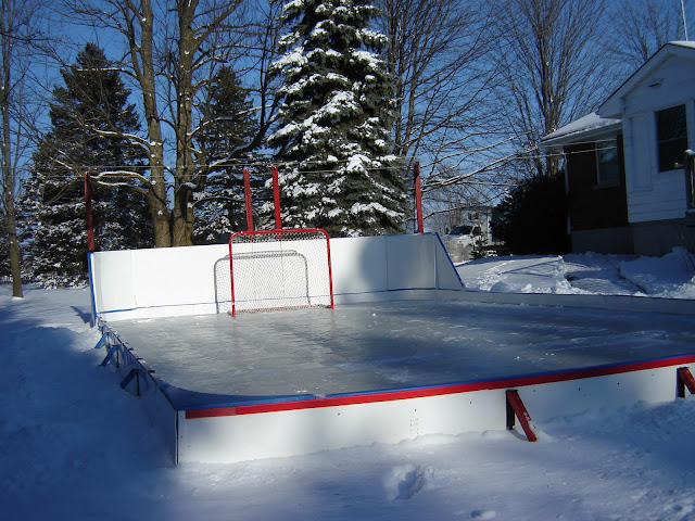 splendid concept of backyard ice rinks wooden raised design red gate with net
