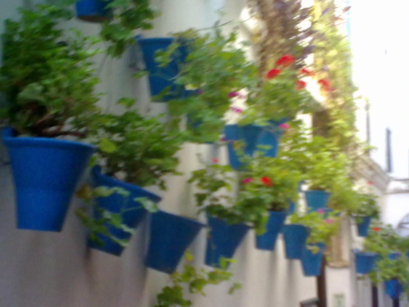 Macetas en la pared perfect macetas pared exterior macetas pared exterior with macetas en la - Macetas en la pared ...