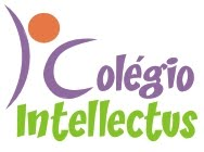 Colégio Intellectus