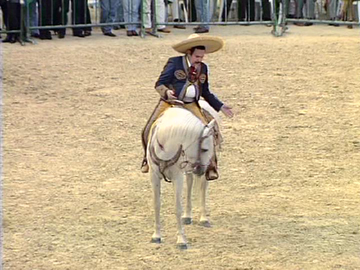 Antonio Aguilar En Vivo Dvd Full